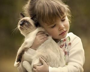 лишай у котов передается человеку