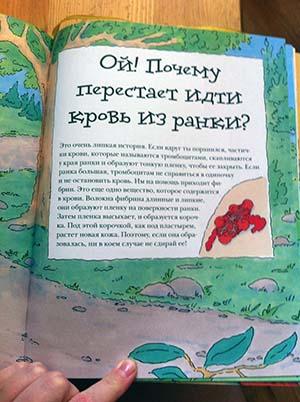 вопросы и ответы для детей