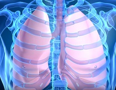 васкулит геморрагический поражение легких