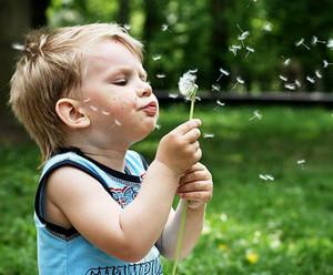 аллергия как определить фото